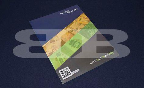Impresión Catálogo Netscout – Seisa