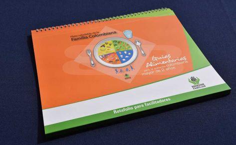 Impresión Rotafolio guías alimentarias DSM -FAO